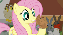 Fluttershy talking to Squirrel S4E01