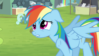 "Rainbow Dash ""hold on a sec"" S4E22"