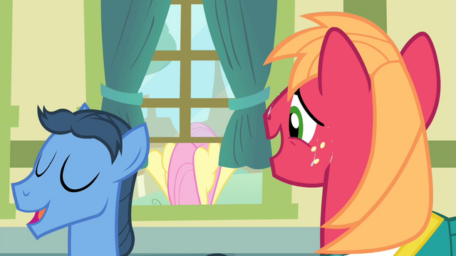 File:Big Mac looking at Fluttershy S4E14.png