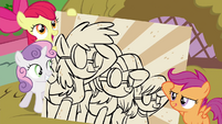 CMC with picture of saluting Wonderbolts S4E21