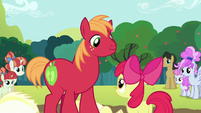 Apple Bloom and Big Mac still win S5E17