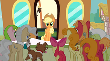 Applejack returns at the train station S2E14