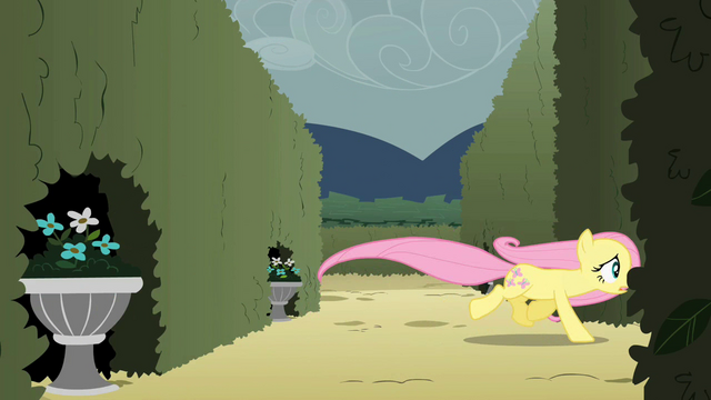 File:Fluttershy chasing after the butterflies S2E01.png