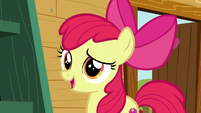 """Apple Bloom """"help you find your purpose"""" S6E19"""