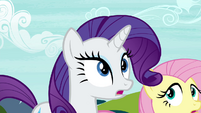 "Rarity ""are you all seeing what I'm seeing?"" S4E26"