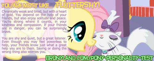 File:FANMADE Banner Fluttershy.jpg