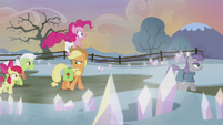 Applejack impressed by rock farm's appearance S5E20