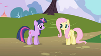 Fluttershy doesn't immediately respond to Twilight S1E01