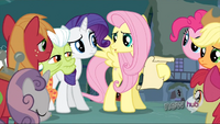 Fluttershy explaining a plan S3E5