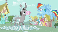 "Rainbow Dash ""No offense"" S2E22"