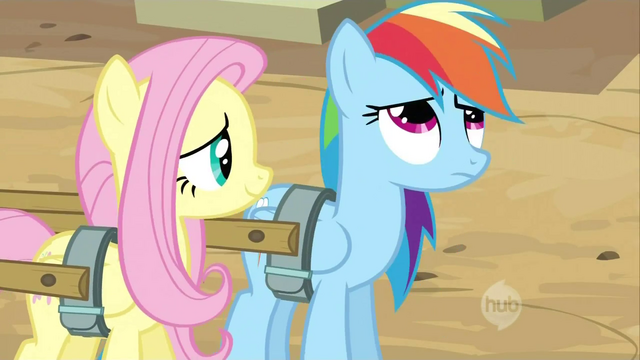 File:Fluttershy looking at Dash S2E14.png