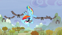 Rainbow kicks a bird away S5E5