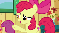"""Apple Bloom """"you don't need a symbol on your flank"""" S6E19"""