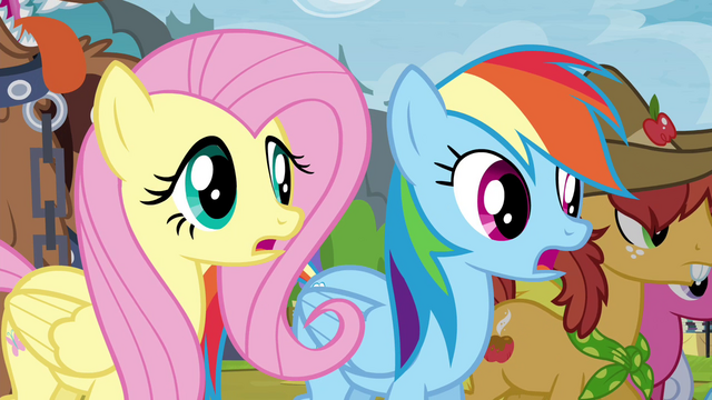 File:Fluttershy and Rainbow Dash surprised S4E22.png