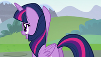 "Twilight asking ""some other detail"" S5E22"