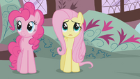 Fluttershy looking up at the mountain S1E07