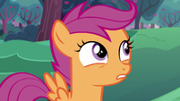 "Scootaloo ""practically"" S6E14"