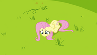 Very Sad Fluttershy on the Ground S02E22