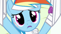 Rainbow Dash touched by Fluttershy's words S4E10