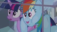 Twilight and Rainbow Dash looking through the window S03E12