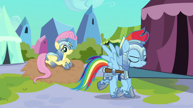 "File:Rainbow Dash ""Not too easy"" S3E02.png"