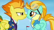 Spitfire nose-to-nose with Lightning Dust S3E7.png