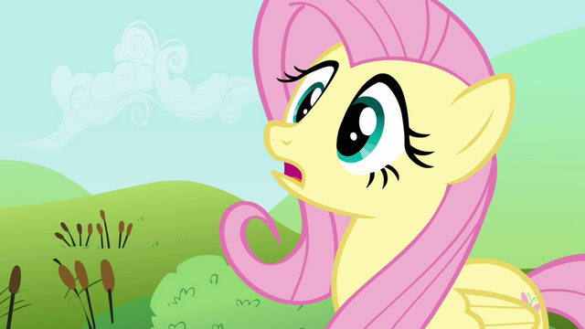 File:Fluttershy remembering her training S2E19.png