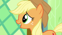 "Applejack ""might have some rustic farm decor"" S5E3"