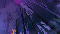 Scootaloo and the trees S3E06