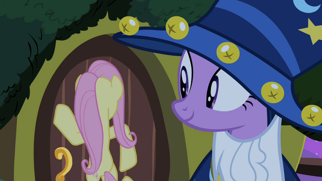 File:Twilight and Fluttershy S02E04.png