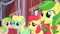 Apple Bloom among members of the Apple family S2E14
