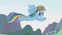 Rainbow Dash flying above the Parasprites S01E10
