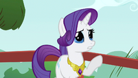 Rarity Rainbow Dash S3E10