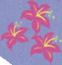 File:Lily Blossom cutie mark crop 1.png