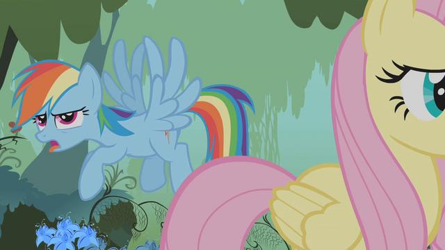 File:Rainbow Dash mocking Twilight S1E09.png