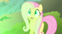 Fluttershy sees flash of green magic S4E23
