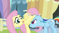 Rainbow Dash headbutts Fluttershy S3E2