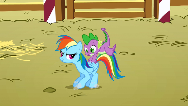 File:Spike on the back of Rainbow Dash S1E13.png