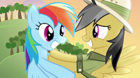 Daring Do pushing Rainbow away S4E04
