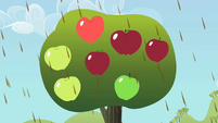 Big apples S2E01