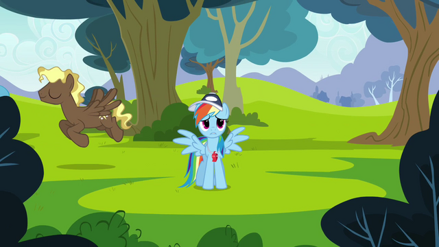 "File:Rainbow Dash ""if only there was a way"" S2E22.png"