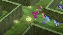 Main cast running through the corn maze S5E21