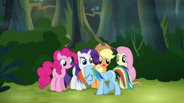 "File:Main ponies ""we can't go back now"" S4E04.png"