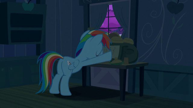 File:Rainbow Dash boarding up the door S6E15.png