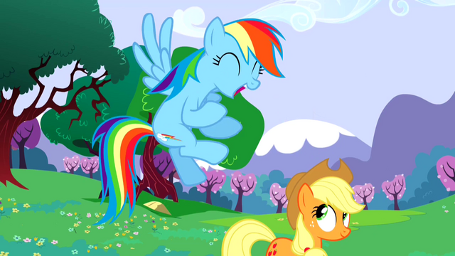 File:Rainbow Dash excited about sonic rainboom S02E25.png