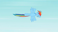 Rainbow Dash fly 1 S2E07