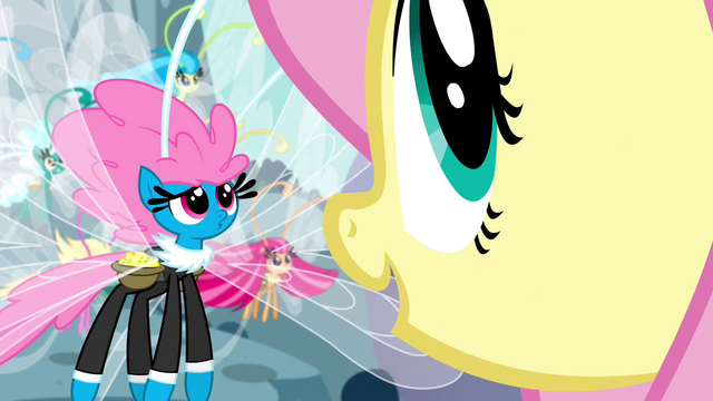 "File:Fluttershy ""all kinds of creatures"" S4E16.png"