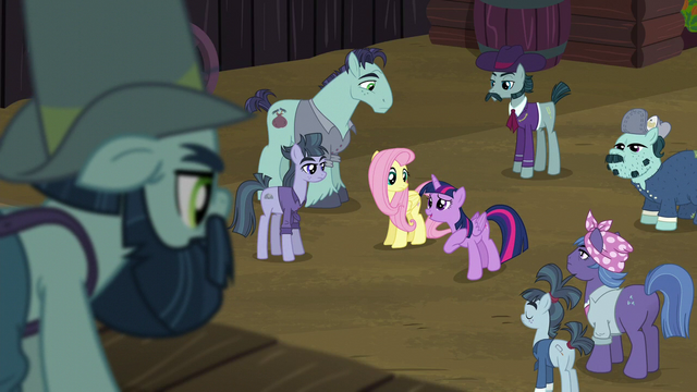 "File:Twilight Sparkle ""they'll listen to me"" S5E23.png"