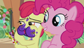 Apple Bloom whispering to Pinkie S5E20.png