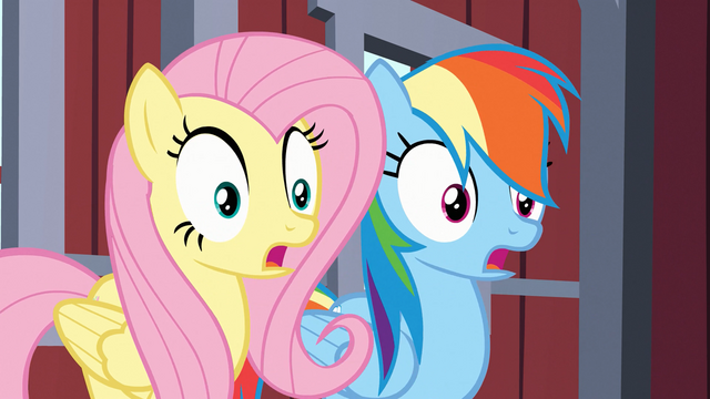 File:Fluttershy and Rainbow Dash gasp S03E09.png
